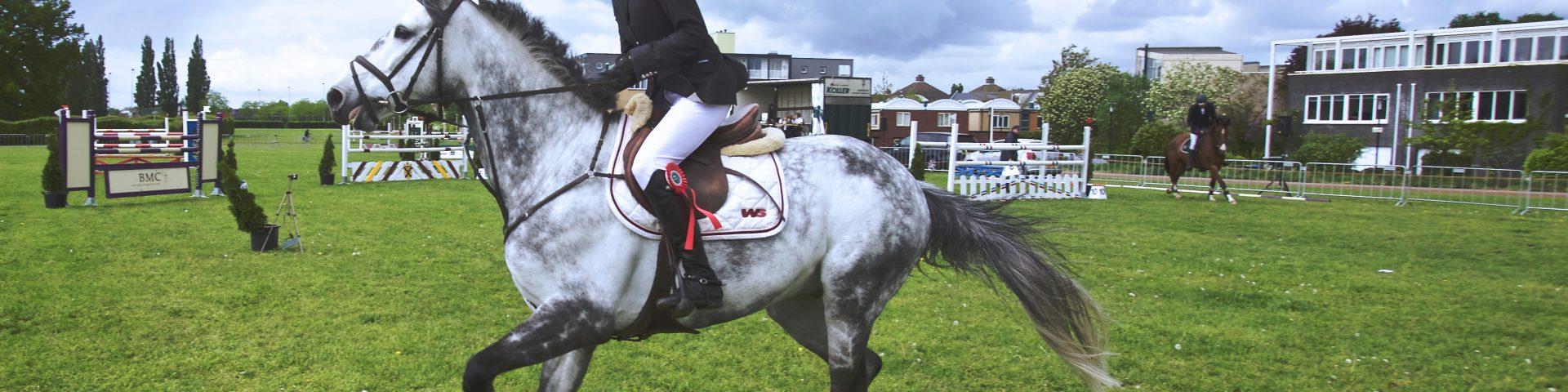 Dlaczego warto wybrać jeździectwo konne?
