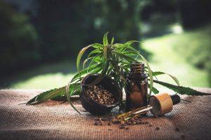 Czy wiesz w jaki sposób zdobyć receptę na marihuanę medyczną?