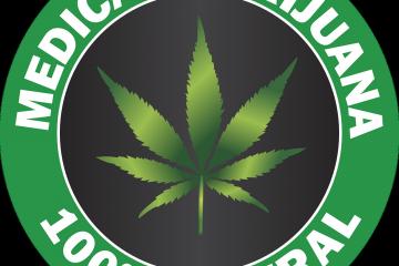 Marihuana lecznicza, co leczy?
